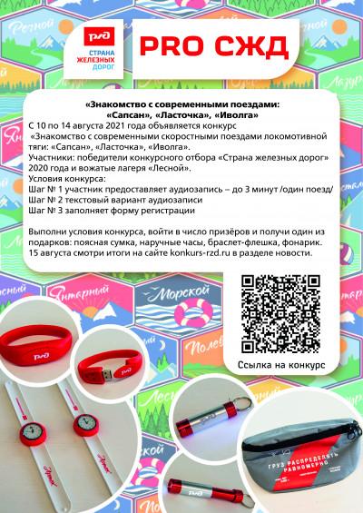 Знакомство с современными поездами: «Сапсан», «Ласточка», «Иволга»